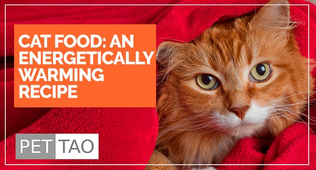 Image for TCVM Warming Cat Food Recipe: Food Therapy Backed by Veterinarians