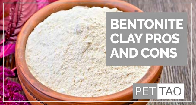 Image for Why is Bentonite Clay Powder in Some Pet Food Products?