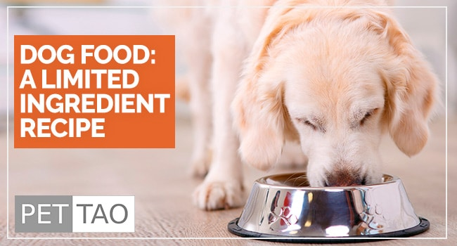 Image for The Limited Ingredient Dog Food Recipe: Eastern Food Therapy Backed by Veterinarians