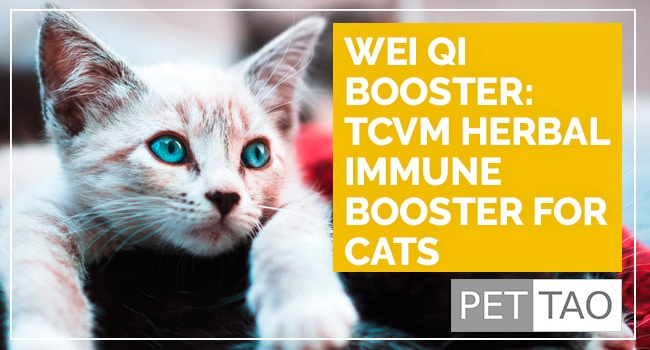 Wei Qi Booster: TCVM Herbal Immune Booster for Cats